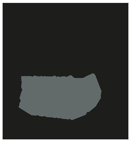 yael-dehass_med_logo